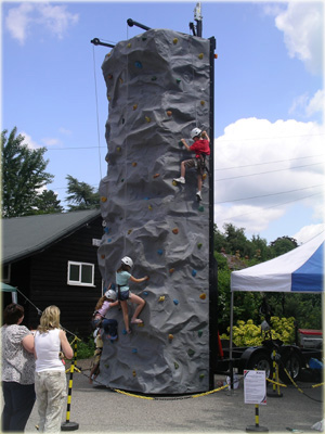 Rock Climbing Walls For Home